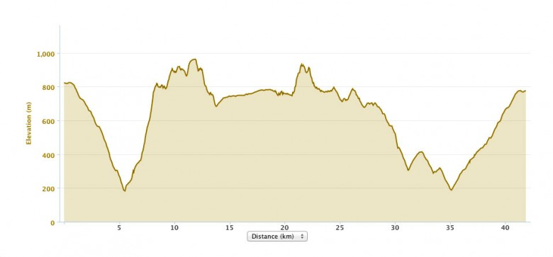 Elevation profile for the Mount Solitary Ultra course
