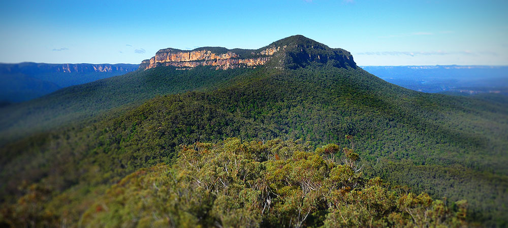 Mount Solitary Ultra Blue Mountains Sarah Richardson Race Report