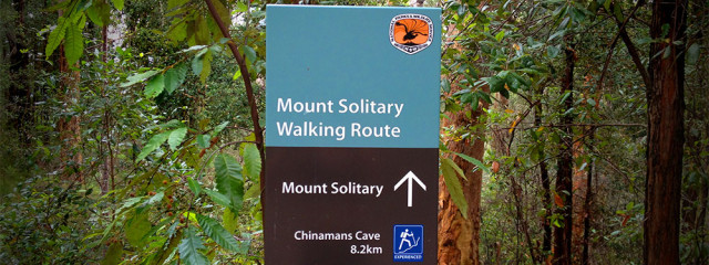 Mt Solitary Walking Route Blue Mountains Shona Stephenson